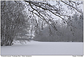 Thorsberger Moor - Winter im Thorsberger Moor