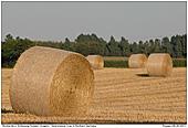 Strohernte - Strohernte in Schleswig-Holstein