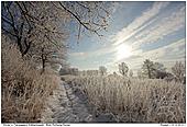 Winter in Flarupgaard - Winter in Flarupgaard